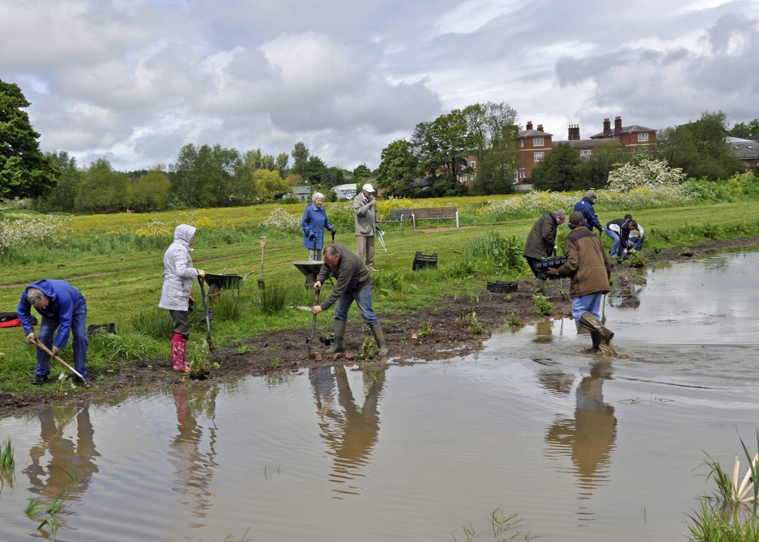 Stone Crown Meadow Volunteers